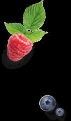 fruit icecream